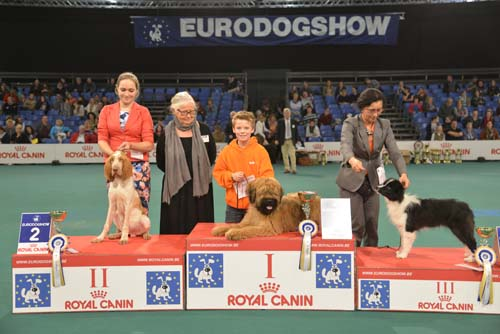 Best Baby (Sunday, 15 November 2015) - Winners of the Eurodogshow Kortrijk (Belgium), 14 - 15 November 2015 (CACIB BIS)