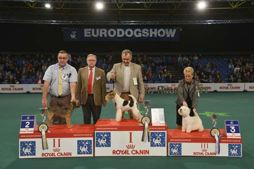 FCI group III - Winners of the Eurodogshow Kortrijk (Belgium), 14 - 15 November 2015 (CACIB BIS)